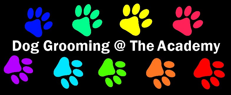 All Breeds Dog Grooming at The Academy